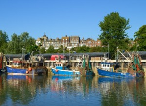 Rye Bay Scallop Week: 25th February – 4th March 2012