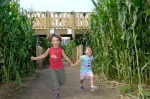 Summer Spectacular at Willows Farm Village