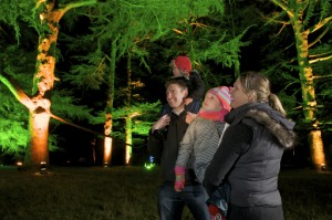 Enchanted Christmas at Westonbirt, The National Arboretum (Photo: Rob Cousins)