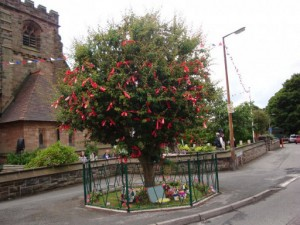 Bawming of the Thorn - Appleton Thorn, Cheshire