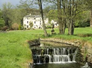 Colby Woodland Garden - © National Trust Images Andrew Butler