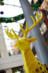 Leeds Reindeer Trail