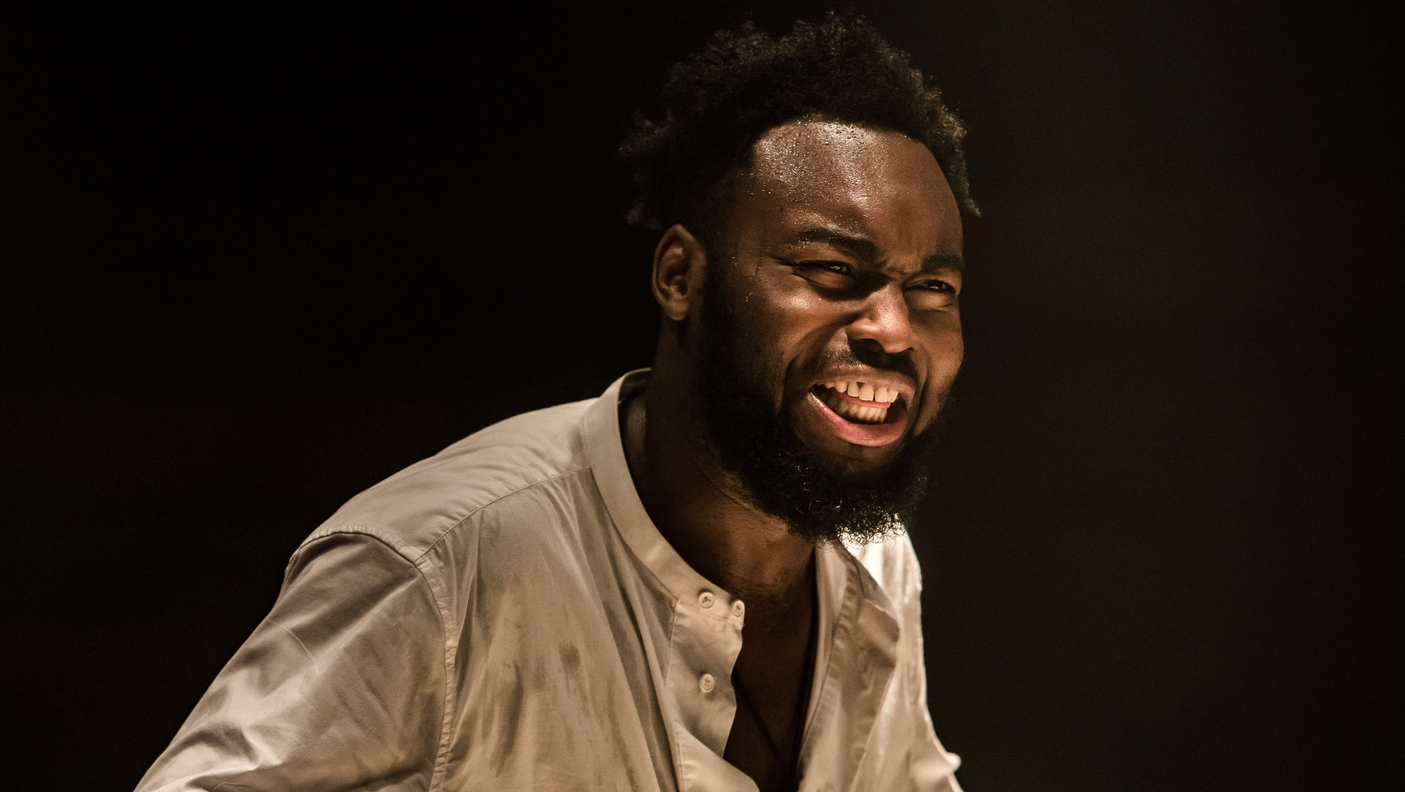 imagery in the play othello In the beginning, it is primarily iago who uses animal imagery over time though, his use of it influences other characters making them use animal imagery as well iago is the first to use animal imagery in othello he uses it in a way to be crude and derogatory primary use of animal imagery.