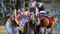 Kit and Caboodle - Horse + Bamboo Theatre Puppet Festival 2017
