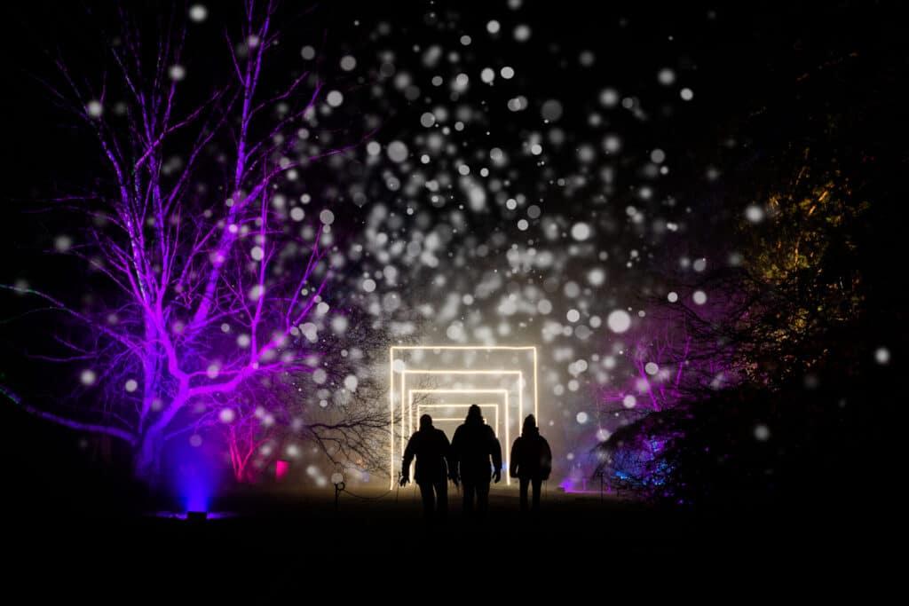 Enchanted Christmas at Westonbirt 2020