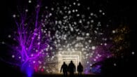Enchanted Christmas at Westonbirt 2020