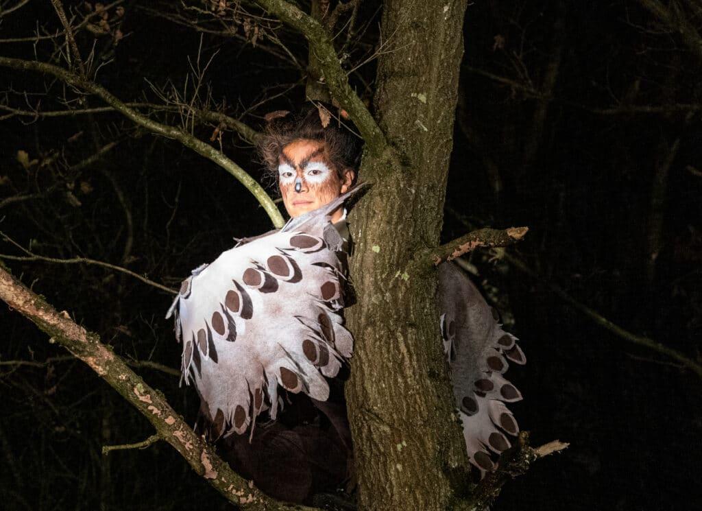 Second Hand's Dance Night Tree Films